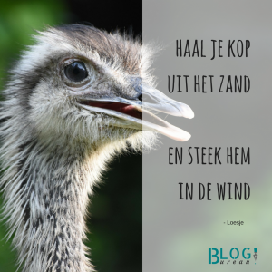struisvogel-haal-je-kop-uit-het-zand-en-steek-hem-in-de-wind