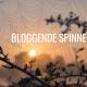 Bloggende spinnen